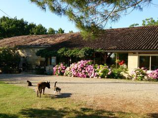 Chambre d'hôtes avec piscine Les Calèches d'Annika, Miramont-de-Guyenne