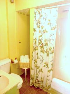 Bathroom renovation planned, toilet and tub