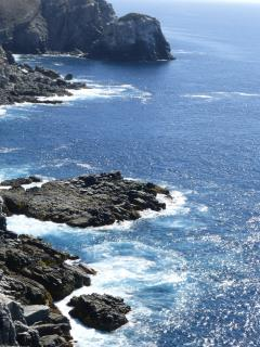 Hike up to Punta Lobos, and look for sea lion colony to the south.