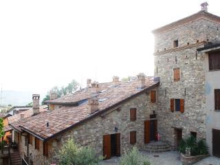 Vecchio Borgo Agriturismo Appartamento l'Aia, Castellarano