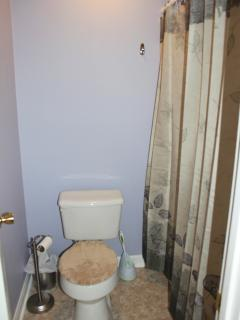 Toilet and shower for Bedroom 2. New shower curtain and mats.