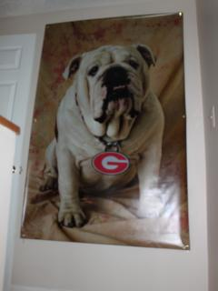 A Bulldogs fan delight--huge banner wall art at top of staircase designed by owner.