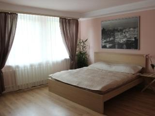 Apartment Strelna, vacation rental in Peterhof