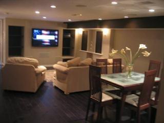 Newly Renovated English Basement Luxury Apartment, Washington DC