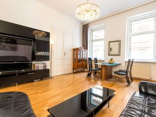 Beautiful Classical Viennese Apartment from 1900, Wenen