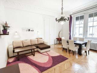 Huge and comfortable city center apartment, Budapest