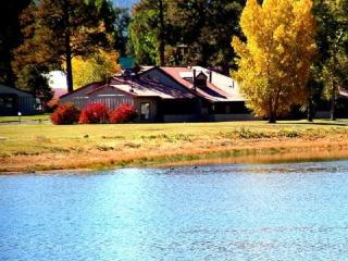 Cozy, pet-friendly vacation condo with beautiful views of the San Juan Mountains., Pagosa Springs