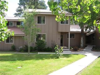 Cherish a relaxing Pagosa Springs vacation in this beautifully decorated condo.