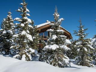 Chalet Augustine, Courchevel