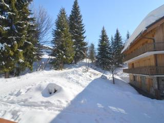 Apartment Gonzales, Meribel