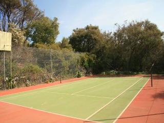 Tennis in Blairgowrie