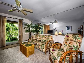Kona Isle A4 Beautifully appointed condo. Ground Floor, Wifi, AC!, Kailua-Kona