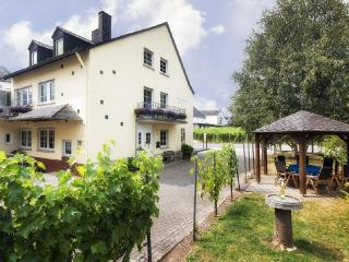 Vacation Apartment in Trittenheim - 915 sqft, wine culture,  warm (# 2909)