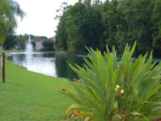 Charming 3 Bed/2 bath (sleeps 6) - condo - Kissimmee, Florida, Old Town