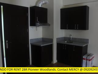 2 BR Condo for rent in Mandaluyong Boni Ave MRT3