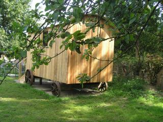 Rhydd Farm Shepherd's Hut, Mold