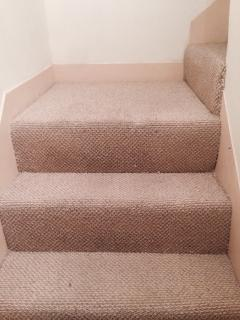 Stairs Carpet - safe for kids