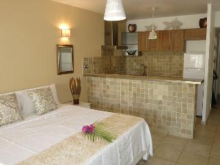 A lovely Studio right accross from the beach., Orient Bay