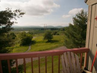 Mountain Magic - 195 Wildflower Way, Canaan Valley