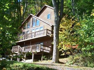 Cinnamon Fern Chalet - 441 Northpoint Way, Canaan Valley