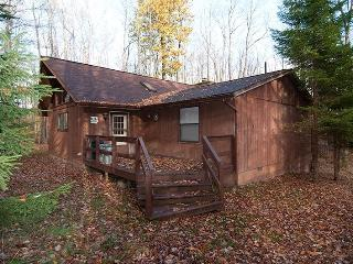 Mountain Treat - 504 Bobcat Road, Canaan Valley