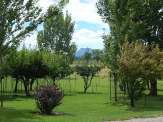 Cooper Vineyards, Cortez