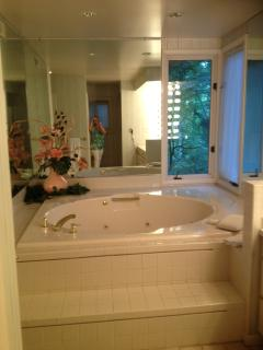 Master bath jacuzzzi