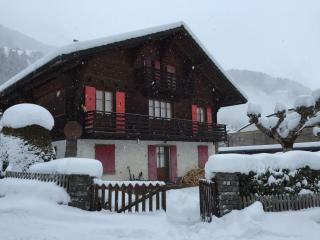 Champery Ski Apartment close to all facilities