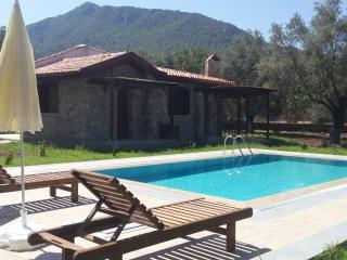 Private Villa with Swimming Pool in 2500 M2, Kayaköy
