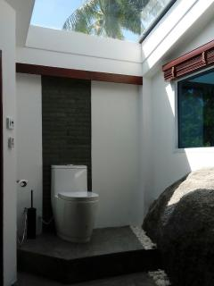 Bathroom with natural rock built-in and glass roof
