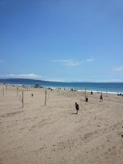 Great summer 'Hawaii' beach day in California