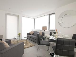 Stylish 1 Bedroom Apartment in Central London
