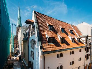 Spacious home of Swedish Gate's, Riga
