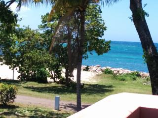 Turquoise Sands Oceanview,on the beach, wifi, Negril