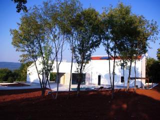 New Villa peaceful large pool offering privacy, Rakalj