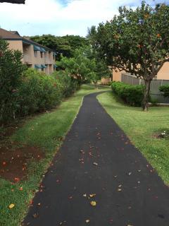 Walking path at Maui Vista