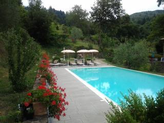 Podere Le Baruti/Pineta, Montevarchi