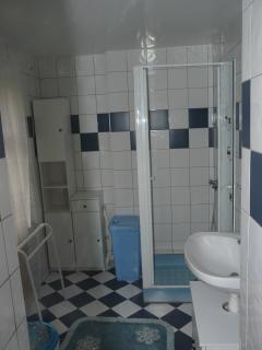 la salle de bain avec Douche lavabo et WC