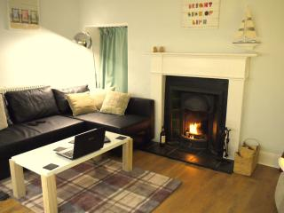 Cosy open plan downstairs with a wood fire (and gas central heating!)
