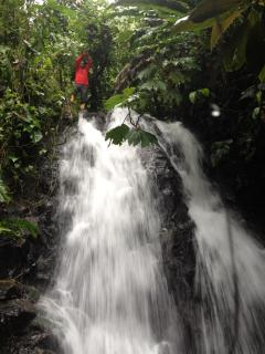 The nearby waterfall that provides us with water on the property¡