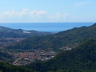 In un mare verde, San Colombano Certenoli