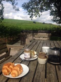 August 2015 - breakfast in the cottage garden (next to the hot tub) with horses in field.