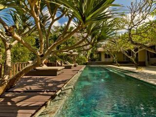 Beautiful villa 1700m2, Long pool and Gym, Canggu