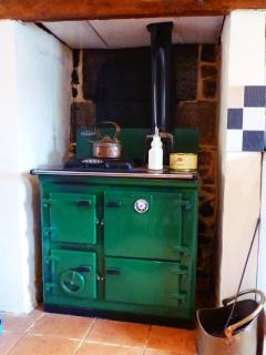 wood burner in kitchen