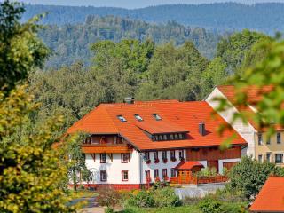 Haus Schlageter Wohnung Süd, Dachsberg