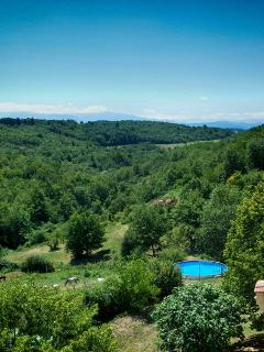 Domaine La Flotte - shared swimming pool with view on the Pyrenees