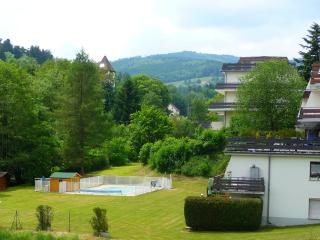 Studio en montagne avec piscine et sauna, Le Hohwald