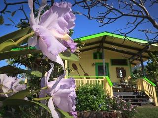 Hotel Pa'amalu