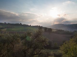 Villa Fiore, Falerone