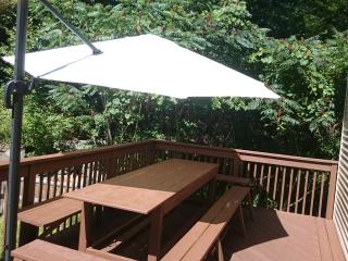 r MINUTES TO WATER PARKS~SAUNA~HOT TUB~PS3~POOL TABLE~FIRE PIT~FIREPLACE